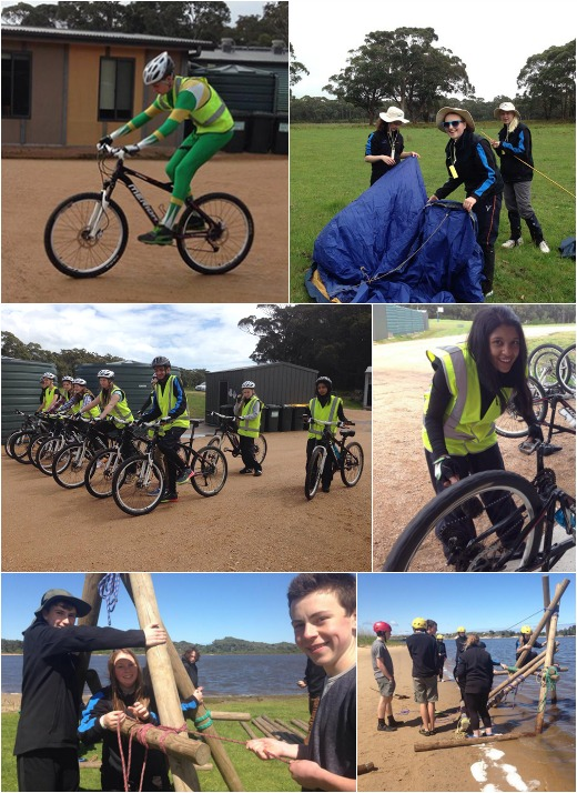 Term 4- Expo Skills, Bridge Building, Bikes