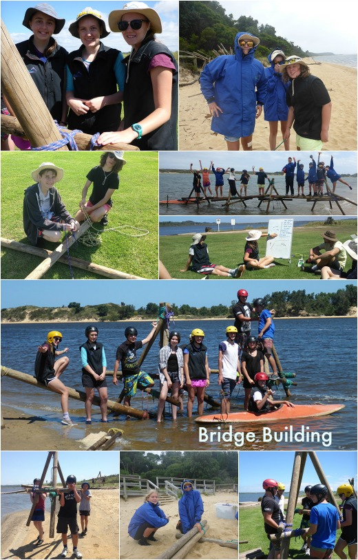 Term 1 Bridge Building